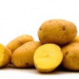 Lý do bạn không nên bảo quản khoai tây trong tủ lạnh